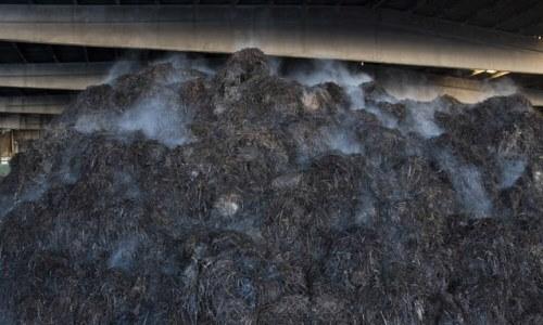 compost champiñones industriales a gran escala