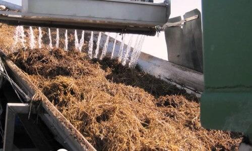 preparación del compost para la cría del champiñón