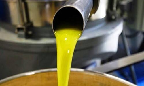 obtención aceite de oliva por prensado