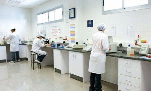 proceso de elaboración maíz dulce enlatado laboratorio