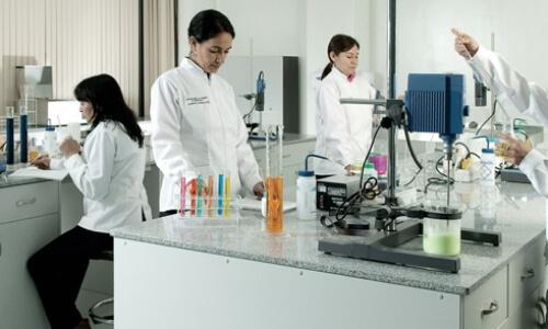 inspección bacterias azafrán