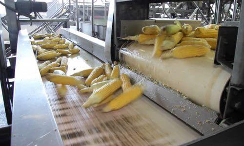 como se hace el maíz en lata