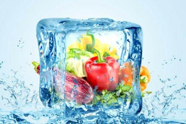 congelación rápida de alimentos carcaterísticas