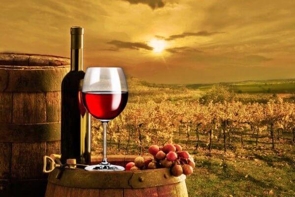 historia del vino resumen